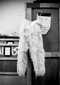 swan lake costume2